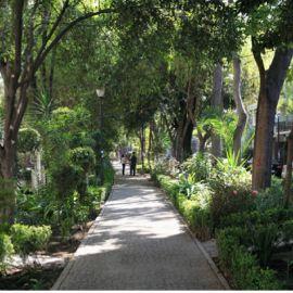 Foto de departamento en venta en Hipódromo Condesa, Cuauhtémoc, DF / CDMX, 14408344,  no 01
