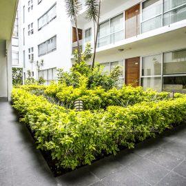 Foto de departamento en venta en Jardines del Pedregal, Álvaro Obregón, DF / CDMX, 21554288,  no 01