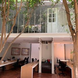 Foto de casa en renta en  , hipódromo, cuauhtémoc, df / cdmx, 0 No. 01