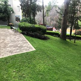 Foto de departamento en renta en  , san josé del olivar, álvaro obregón, df / cdmx, 20455355 No. 01