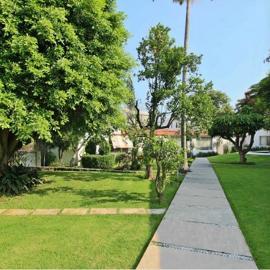 Foto de casa en venta en tulipanes , jardines de delicias, cuernavaca, morelos, 0 No. 01