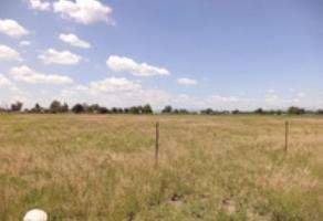 Foto de terreno comercial en venta en 0 0, lagos de moreno, lagos de moreno, jalisco, 6880965 No. 01