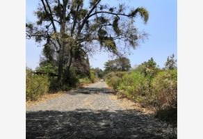 Foto de terreno habitacional en venta en 0 0, totolapan, totolapan, morelos, 0 No. 01