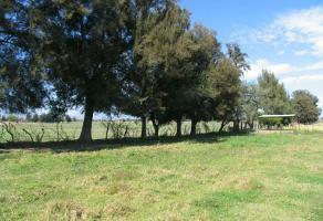 Foto de terreno habitacional en venta en atequiza 0, atequiza estacion, ixtlahuacán de los membrillos, jalisco, 3038975 No. 03