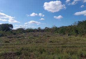 Foto de terreno industrial en venta en 0 , chablekal, mérida, yucatán, 9612606 No. 01