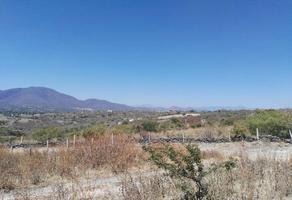 Foto de terreno habitacional en venta en . 0, fraccionamiento los ciruelos, yautepec, morelos 0, rincón de los ciruelos, yautepec, morelos, 8872088 No. 01
