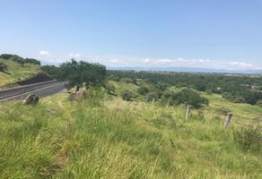 Foto de terreno industrial en venta en 00 , alpuyeca, xochitepec, morelos, 6061783 No. 01