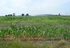 Foto de terreno comercial en venta en ejido ignacio vallarta 0000, la calera, tlajomulco de zúñiga, jalisco, 1529858 No. 01