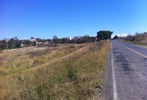 Foto de terreno comercial en venta en carretera a barra de navidad 00000, tenamaxtlan, tenamaxtlán, jalisco, 3021199 No. 01