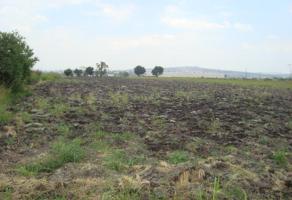 Foto de terreno comercial en venta en vereda de las violetas 000000000, la calera, tlajomulco de z??iga, jalisco, 1180207 No. 01