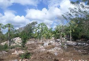 Foto de terreno industrial en venta en 01 69, cholul, mérida, yucatán, 6487460 No. 01