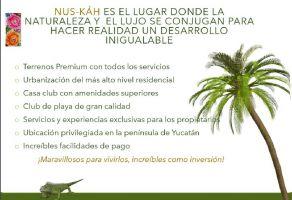 Foto de terreno habitacional en venta en Chuburna Puerto, Progreso, Yucatán, 20491405,  no 01