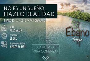 Foto de terreno habitacional en venta en Ejido, Tulum, Quintana Roo, 20521325,  no 01