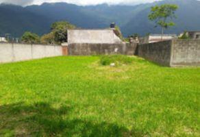 Foto de terreno habitacional en venta en Felipe Carrillo Puerto, Nogales, Veracruz de Ignacio de la Llave, 10448082,  no 01