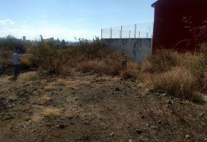 Foto de terreno habitacional en venta en Centro, Yautepec, Morelos, 19409941,  no 01