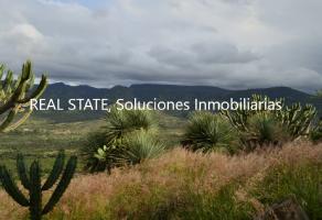 Foto de terreno comercial en venta en Escolástica, Pedro Escobedo, Querétaro, 22144574,  no 01