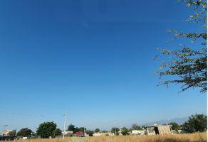 Foto de terreno habitacional en venta en Yecapixtla, Yecapixtla, Morelos, 22144498,  no 01