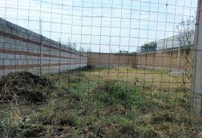 Foto de terreno habitacional en venta en Campo Sotelo, Temixco, Morelos, 20074505,  no 01