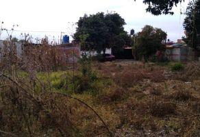 Foto de terreno comercial en venta y renta en San Juan Cuautlancingo Centro, Cuautlancingo, Puebla, 12542259,  no 01