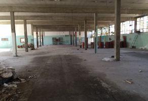 Foto de bodega en renta en Las Águilas, Álvaro Obregón, Distrito Federal, 5972323,  no 01