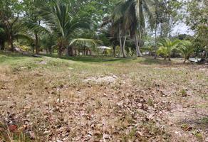 Foto de terreno habitacional en venta en 1 1, bacalar, bacalar, quintana roo, 0 No. 01