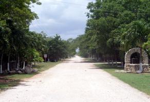 Foto de terreno habitacional en venta en 1 1, chicxulub, chicxulub pueblo, yucatán, 21317635 No. 01