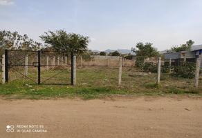 Foto de terreno comercial en venta en 1 1, loma oaxaca, oaxaca de juárez, oaxaca, 20580604 No. 01