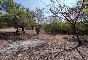 Foto de terreno habitacional en venta en 1 2, guadalupe, tuxtla gutiérrez, chiapas, 0 No. 01
