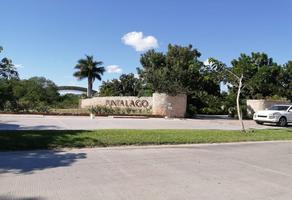 Foto de casa en venta en 1 , jalapa, mérida, yucatán, 14370202 No. 01