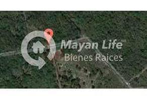 Foto de terreno habitacional en venta en 1 , merida centro, mérida, yucatán, 17890338 No. 01
