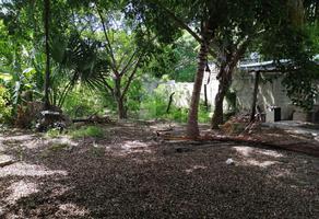 Foto de terreno habitacional en renta en 1 , playa del carmen centro, solidaridad, quintana roo, 15777603 No. 01