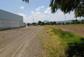Foto de terreno habitacional en venta en 10 poniente 5, la trinidad tepango, atlixco, puebla, 0 No. 01