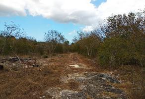 Foto de terreno industrial en venta en 10000 88, sierra papacal, mérida, yucatán, 8765489 No. 01