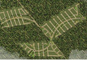 Foto de terreno habitacional en venta en Chicxulub, Chicxulub Pueblo, Yucatán, 22172321,  no 01
