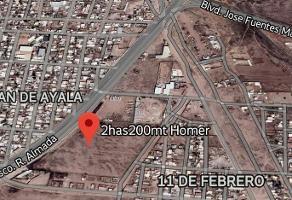 Foto de terreno habitacional en venta en  , 11 de febrero, chihuahua, chihuahua, 11834759 No. 01