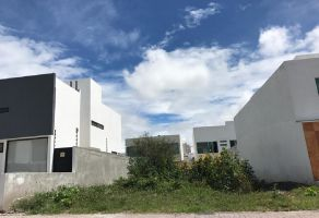 Foto de terreno habitacional en venta en Residencial el Refugio, Querétaro, Querétaro, 15627776,  no 01