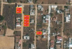 Foto de terreno habitacional en venta en San Isidro Monjas, Santa Cruz Xoxocotlán, Oaxaca, 17489019,  no 01