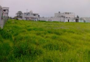 Foto de terreno habitacional en venta en San Mateo Otzacatipan, Toluca, México, 22027473,  no 01