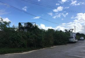 Foto de terreno industrial en venta en 13 89, cholul, mérida, yucatán, 10003143 No. 01