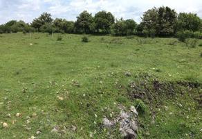 Foto de terreno habitacional en venta en  , 13 de septiembre, yautepec, morelos, 16220164 No. 01