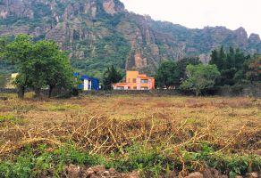 Foto de terreno habitacional en venta en El Tesoro, Tepoztlán, Morelos, 19574029,  no 01