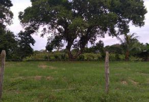 Foto de terreno habitacional en venta en Ixchel, Benito Juárez, Quintana Roo, 20028463,  no 01