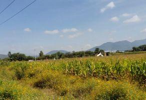 Foto de terreno comercial en venta en Arcos de la Cruz, Tlajomulco de Zúñiga, Jalisco, 7181666,  no 01