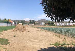 Foto de terreno habitacional en venta en 15 sur , zerezotla, san pedro cholula, puebla, 0 No. 01