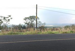 Foto de terreno habitacional en venta en Vistas Tonallán, Tonalá, Jalisco, 5534080,  no 01