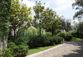 Foto de terreno habitacional en venta en 16 de septiembre , contadero, cuajimalpa de morelos, df / cdmx, 14105073 No. 01