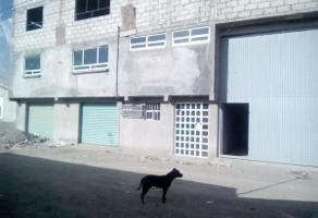 Foto de bodega en renta en 16 de septiembre , el palmar, pachuca de soto, hidalgo, 12057260 No. 01