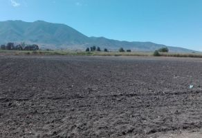 Foto de terreno comercial en venta en Santa Paula, Tlacolula de Matamoros, Oaxaca, 21419449,  no 01