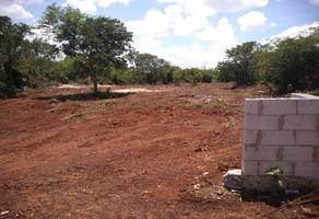 Foto de terreno habitacional en venta en 17 152, cholul, mérida, yucatán, 0 No. 01