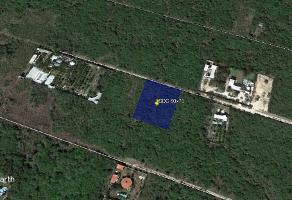 Foto de terreno habitacional en venta en 17 , san francisco de asís, conkal, yucatán, 13772934 No. 01